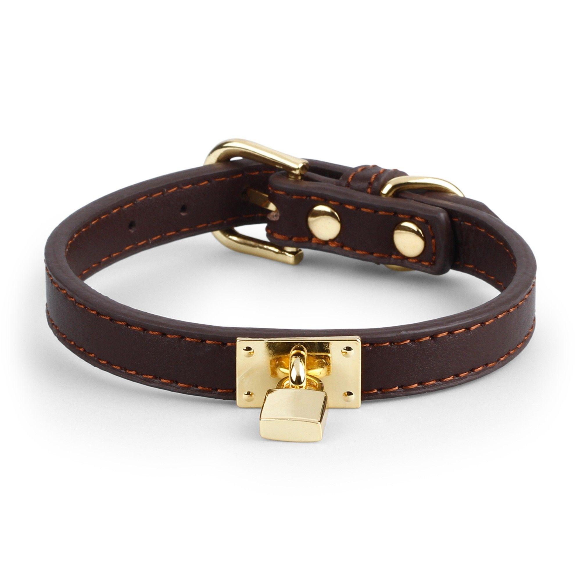 collar de perros
